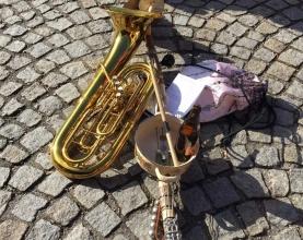Fasching Musikverein Pregarten 2019 (19)