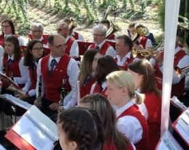 Hopfenklaenge-Musikverein-Pregarten Holz 3