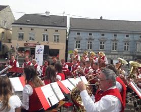 Maibaum-Pregarten-2018-Musikverein-5